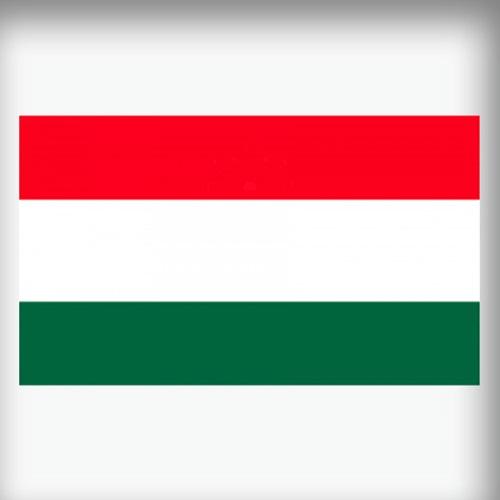 AVK Hungary