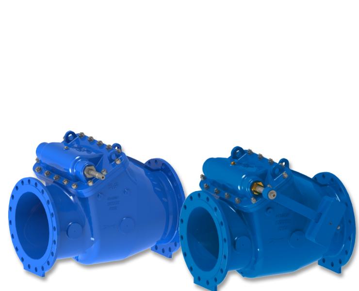 Check valves for water transmission